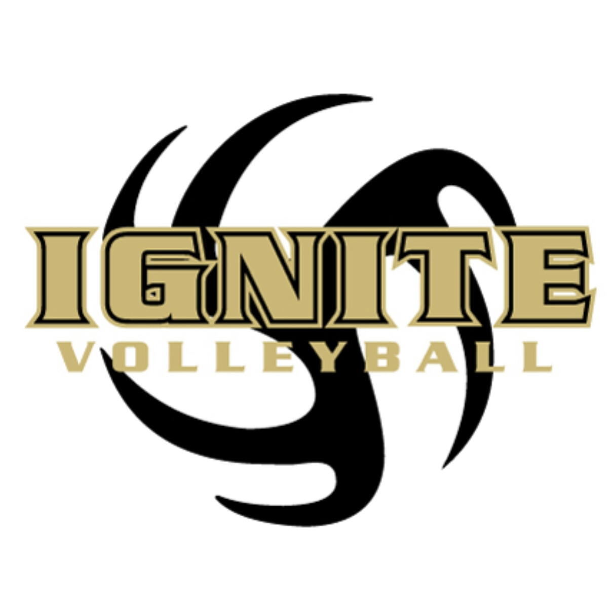 Ignite Volleyball Club Inc Home